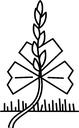logo aggf noresize