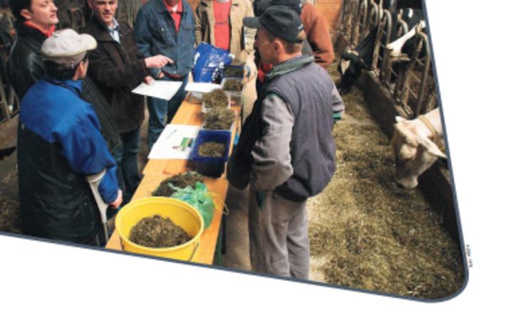 Neuerscheinung: Praxisbewertung von Grundfutter für Wiederkäuer