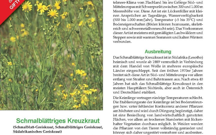 Neuerscheinung: ÖAG Merkblatt Giftpflanzen Schmalblättriges Kreuzkraut (5/2018)