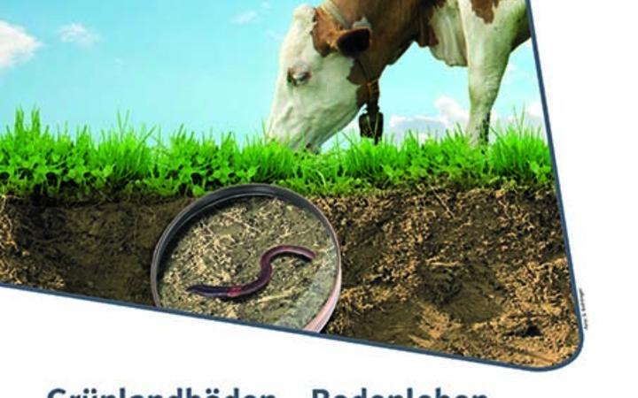 Neuerscheinung: Grünlandböden – Bodenleben aktivieren und Qualität erhalten, Teil 1